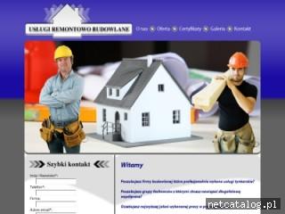 Zrzut ekranu strony tynkislask.pl
