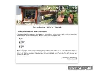 Zrzut ekranu strony www.meblebiesiadne.com.pl