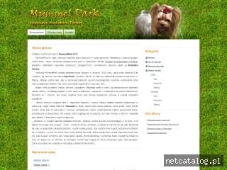 Zrzut ekranu strony www.mummelpark.pl
