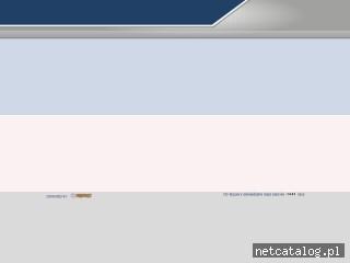 Zrzut ekranu strony www.raport-windykacja.pl