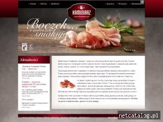 Zrzut ekranu strony www.kaminiarz.pl