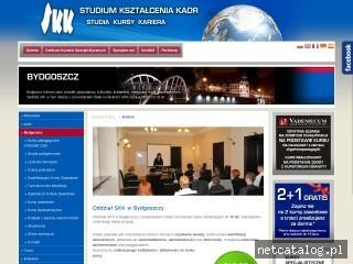 Zrzut ekranu strony www.skk.pl