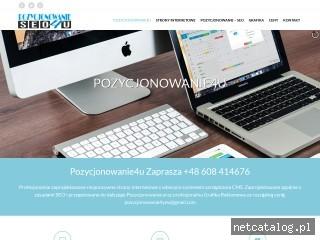 Zrzut ekranu strony pozycjonowanie4u.pl