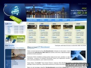 Zrzut ekranu strony www.city-szczecin.pl