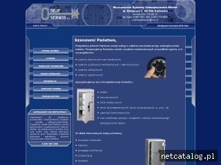 Zrzut ekranu strony www.sejfserwis.com