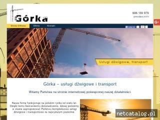 Zrzut ekranu strony dzwigigorka.pl