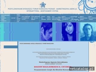 Zrzut ekranu strony www.pozycjonowanie-msystem.pl