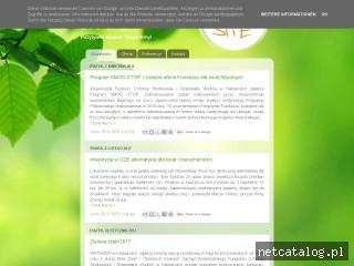 Zrzut ekranu strony www.eco-site.com.pl