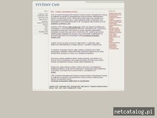 Zrzut ekranu strony www.projektowaniestroncms.info