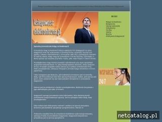 Zrzut ekranu strony www.ksiegowoscelektroniczna.pl