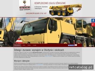 Zrzut ekranu strony www.dzwigi-rybacki.com.pl