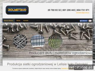 Zrzut ekranu strony gwozdziesiatkidruty.pl