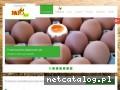 JAJO LUX świeże jaja Wrocław