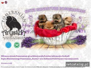 Zrzut ekranu strony pomeraniany.pl