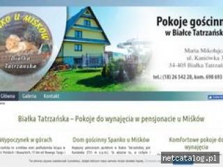 Zrzut ekranu strony pokojedowynajeciawbialce.pl