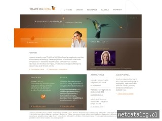 Zrzut ekranu strony www.tradelay.com