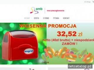 Zrzut ekranu strony amb.net.pl