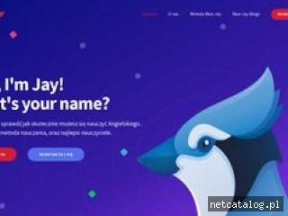 Zrzut ekranu strony www.blue-jay.pl