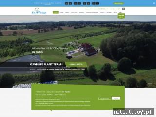 Zrzut ekranu strony inpuris.pl