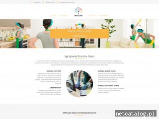 Zrzut ekranu strony clean-pro.com.pl
