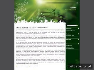 Zrzut ekranu strony e-sennik.net
