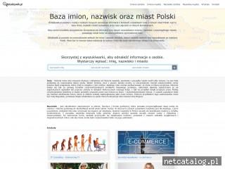 Zrzut ekranu strony detektywik.pl
