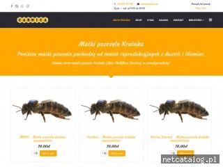 Zrzut ekranu strony carnica.pl