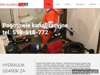 Zrzut ekranu strony www.hydraulikgdansk.com