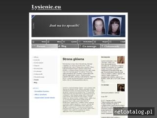 Zrzut ekranu strony www.lysienie.eu