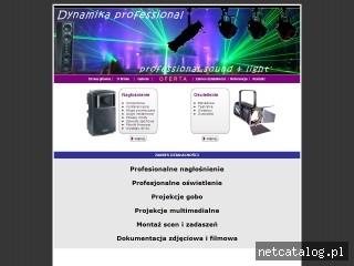 Zrzut ekranu strony www.dynamika.waw.pl