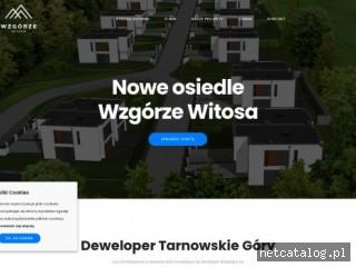 Zrzut ekranu strony wzgorzewitosa.pl