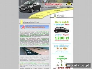 Zrzut ekranu strony www.autosalwator.pl