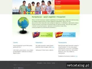 Zrzut ekranu strony www.korepetycje-slask.pl