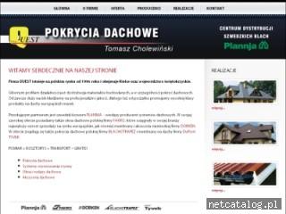 Zrzut ekranu strony www.quest-dachy.pl