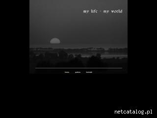 Zrzut ekranu strony www.casco.waw.pl