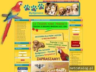 Zrzut ekranu strony www.ara.bydgoszcz.pl