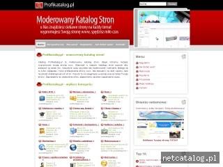 Zrzut ekranu strony www.profikatalog.pl