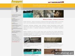 Zrzut ekranu strony www.saappur.com