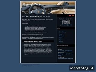 Zrzut ekranu strony www.tapicer.pl