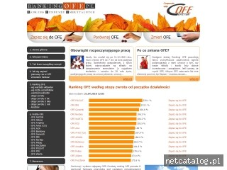 Zrzut ekranu strony www.rankingofe.pl