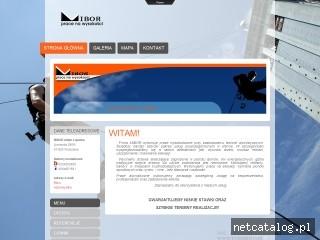 Zrzut ekranu strony www.prace-alpinistyczne.com.pl
