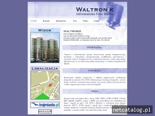 Zrzut ekranu strony www.waltronik.com