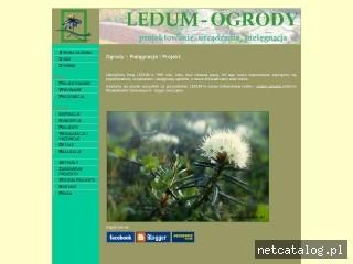 Zrzut ekranu strony www.ledum.pl