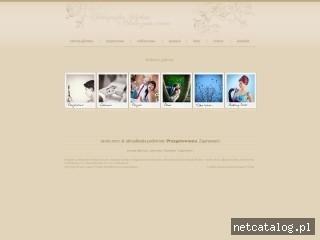Zrzut ekranu strony www.cezarywitek.com