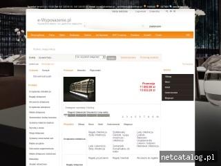 Zrzut ekranu strony www.e-wyposazenie.pl