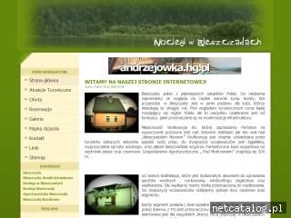 Zrzut ekranu strony www.bieszczadzkienoclegi.com