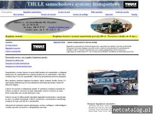 Zrzut ekranu strony www.dibag.pl