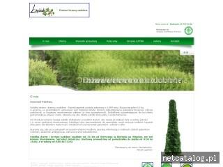 Zrzut ekranu strony www.szkolka-lapinski.pl