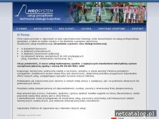 Zrzut ekranu strony www.mro-system.pl
